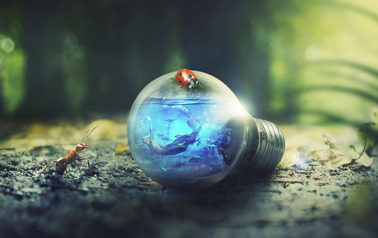 Mermaid swimming inside a lightbulb on the forest floor