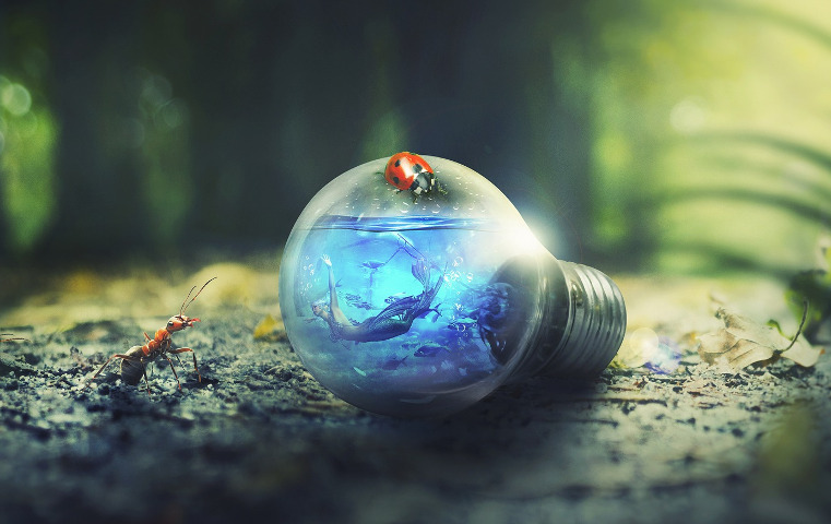 Mermaid swimming inside a lightbulb on the forest floor